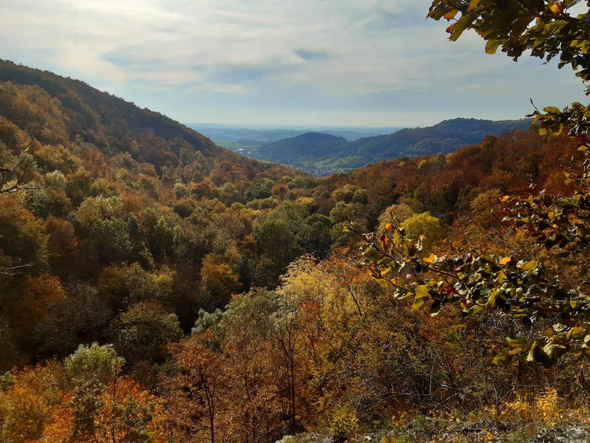 Wanderausstellung vom Naturpark Fränkische Schweizi - Frankenjura