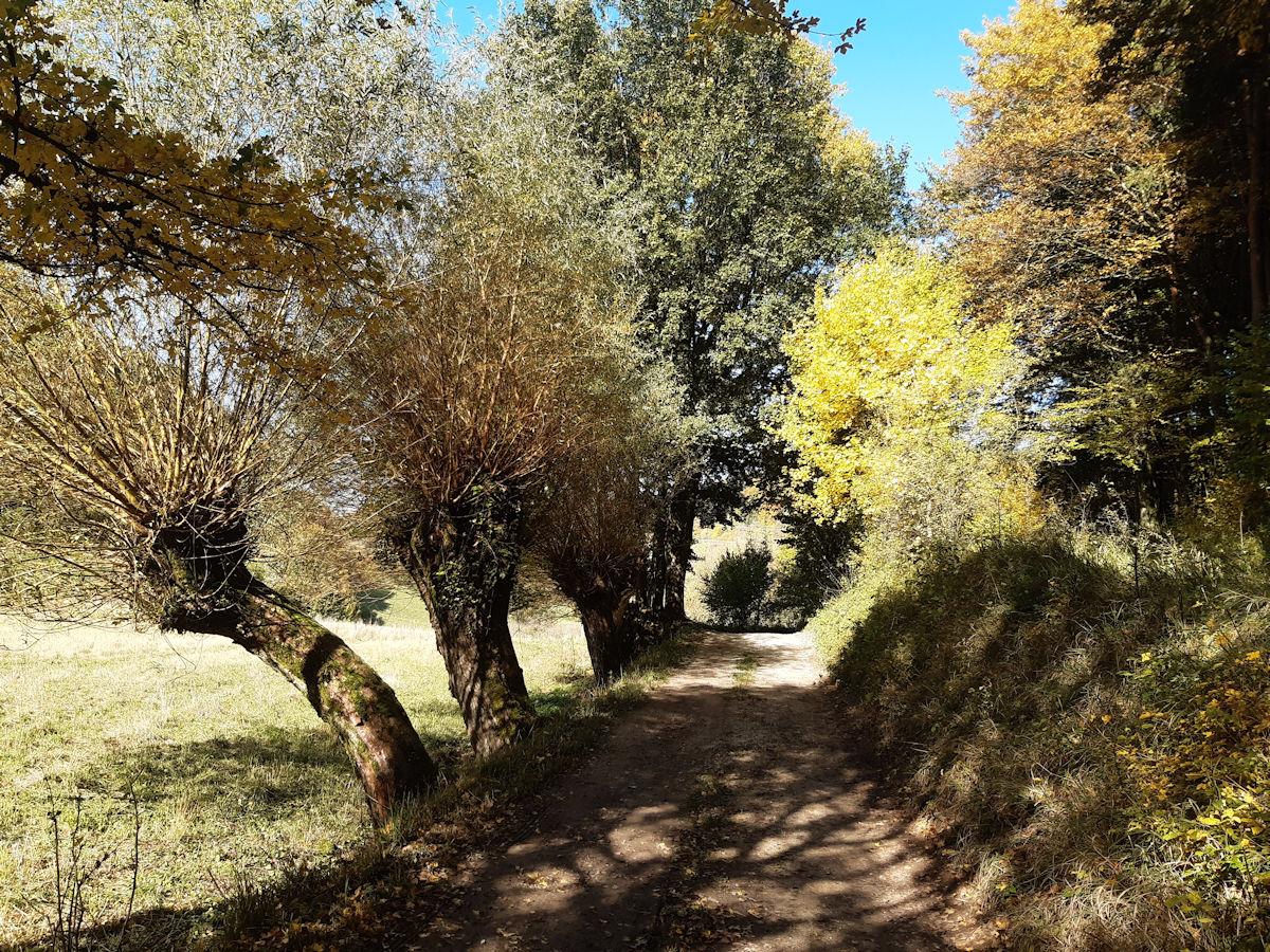 Wanderausstellung vom Naturpark Fränkische Schweizi – Frankenjura