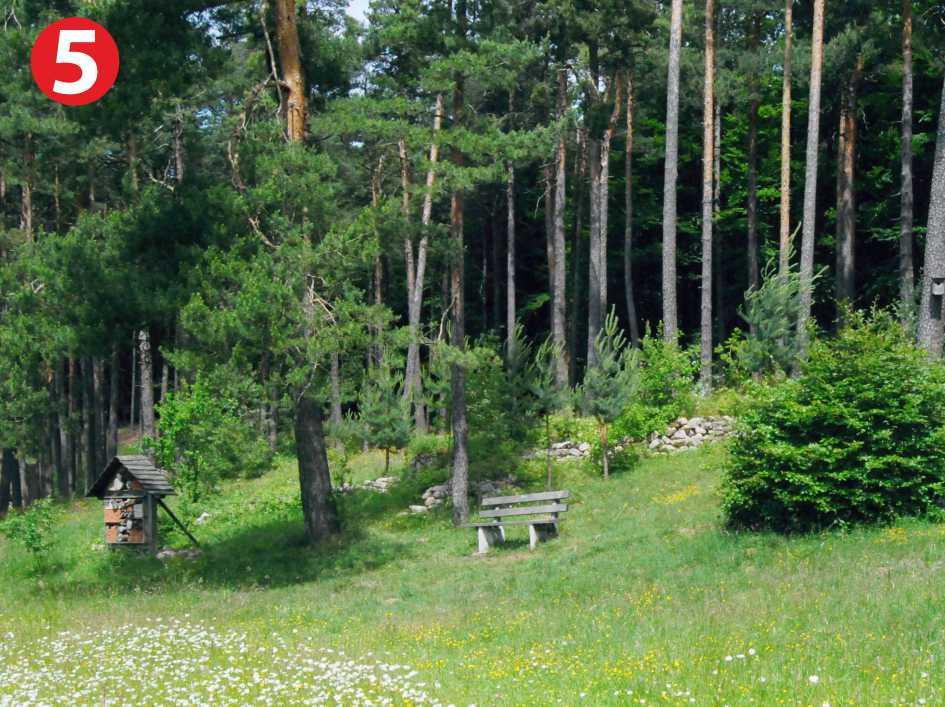 Infopunkt Stierberg im Naturpark Fränkische Schweiz - Frankenjura