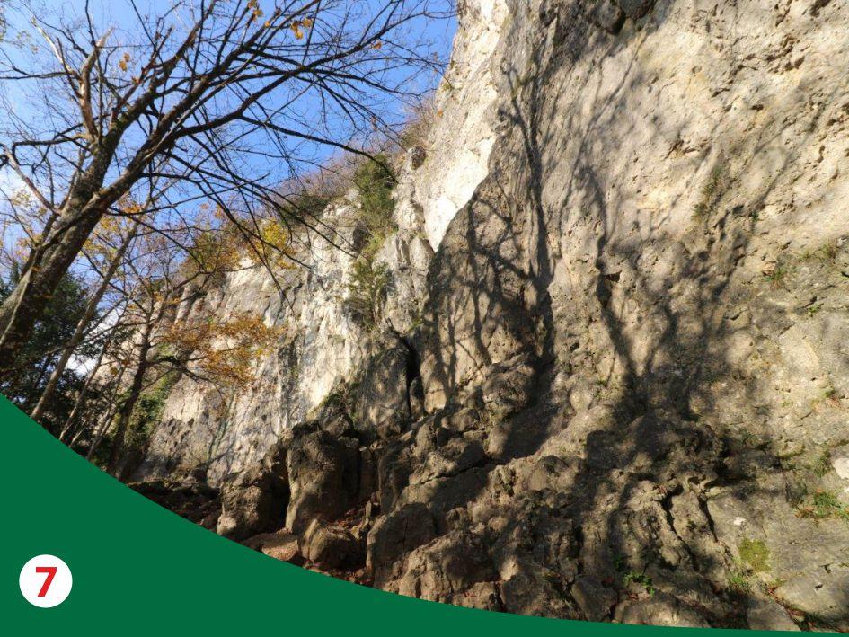 Kletterkonzepte im Naturpark Fränkische Schweiz - Frankenjura ©frankenjura.com