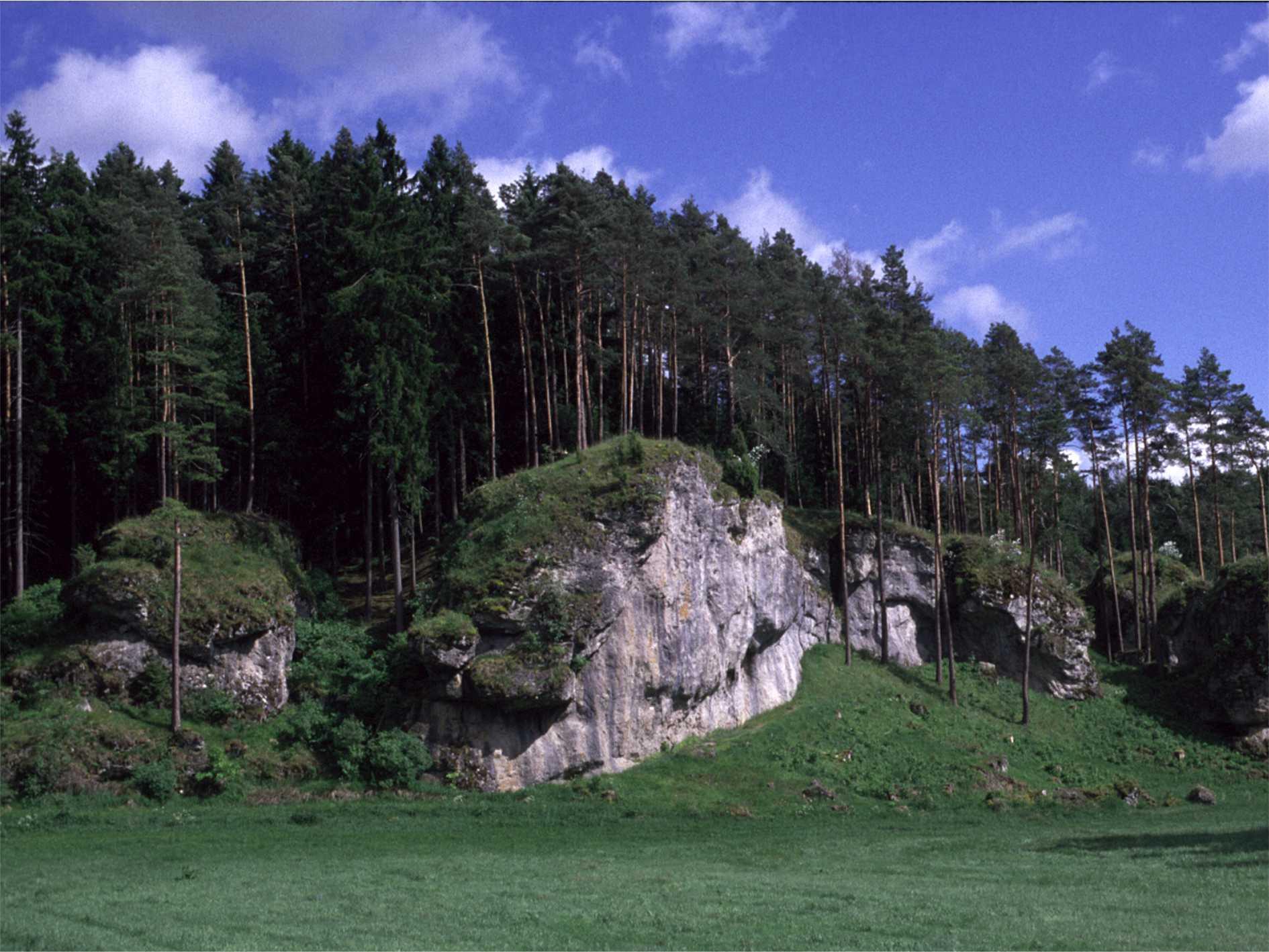 Kuhleutner Wand nach der Felsfreilegung
