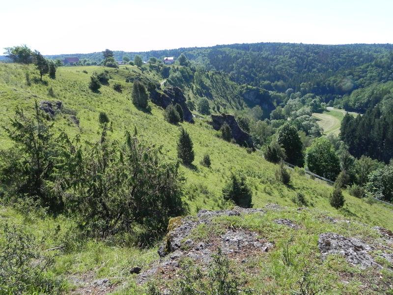 Wacholderheiden im Naturpark Fränkische Schweiz - Veldensteiner Forst