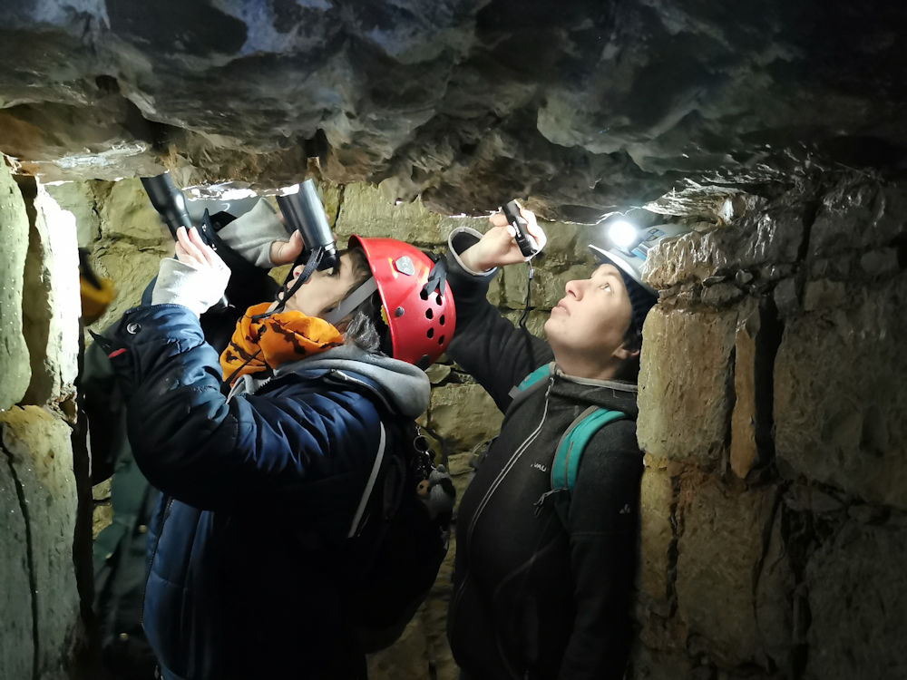 Fledermausmonitoring in der Festung Rothenberg. Fledermausexpertin Bettina Cordes und Naturpark-Rangerin Julia Dummert untersuchen die Gewölbe in den Festungsgängen.
