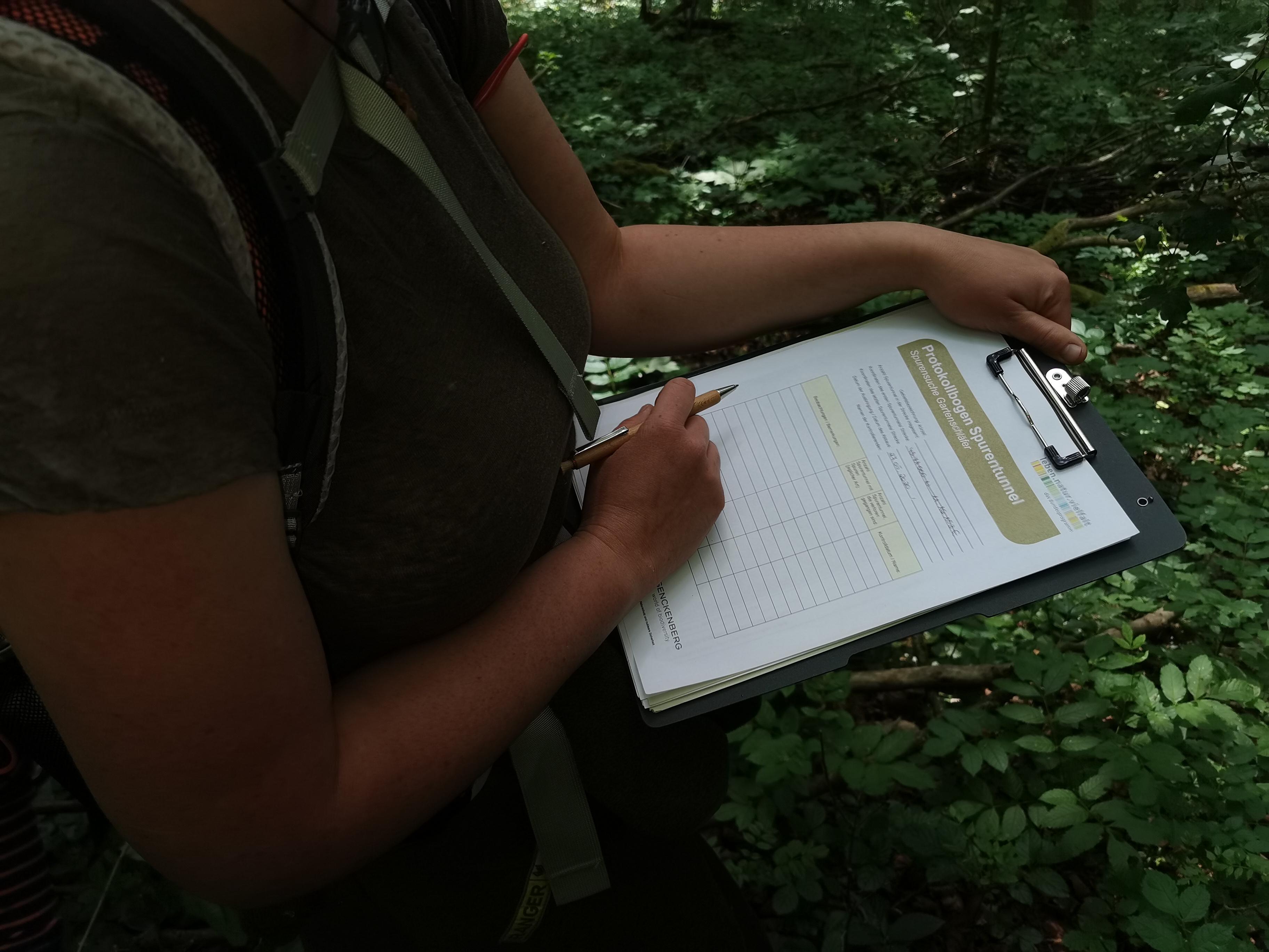 Naturpark-Rangerin Julia Dummert notiert die Daten